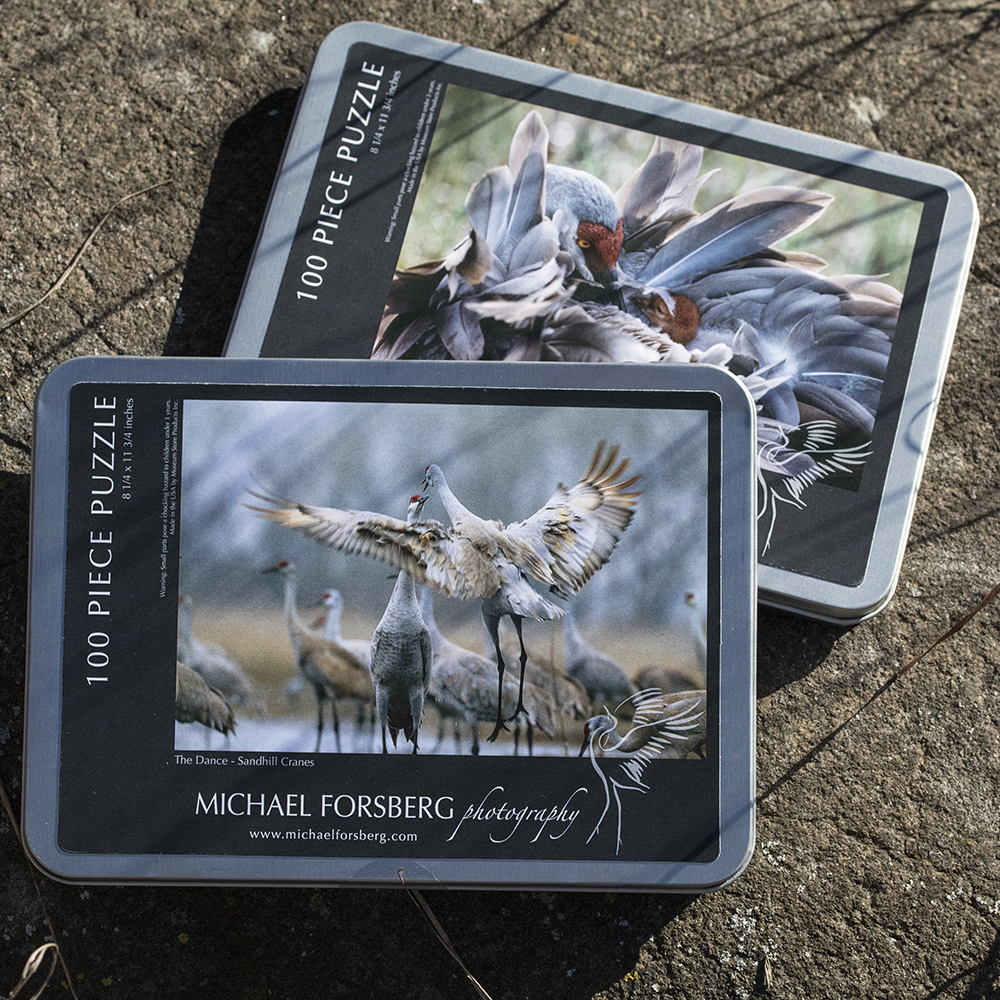 Photo of puzzle tins
