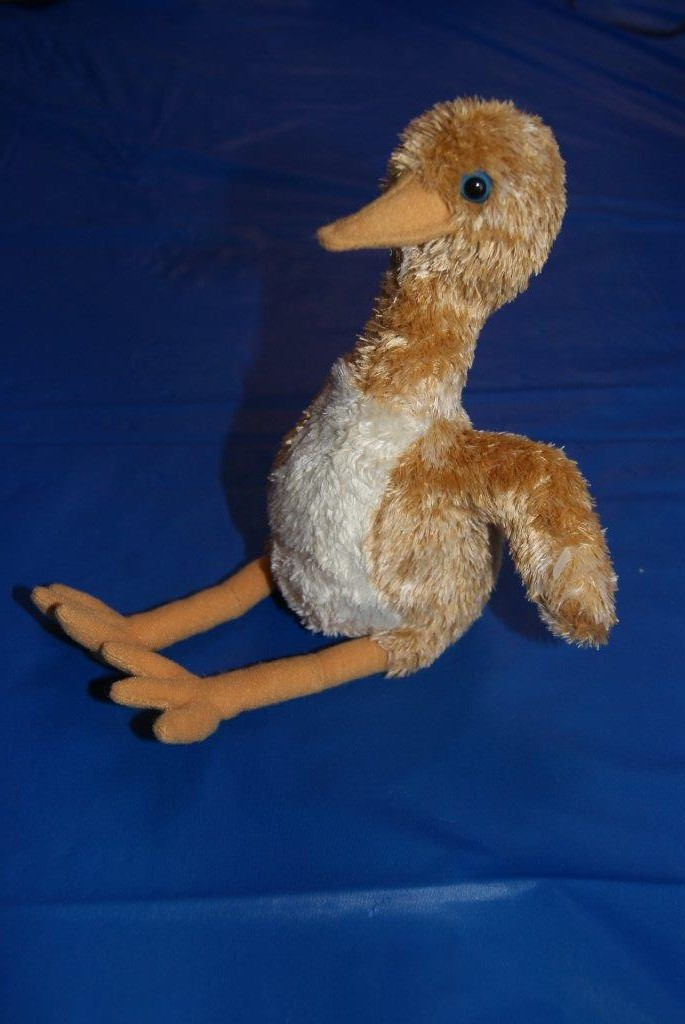 Photo of Plush Sandhill Crane Chick