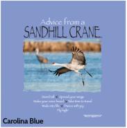 /Portals/0/SmithCart/Images/Carolina Blue.png
